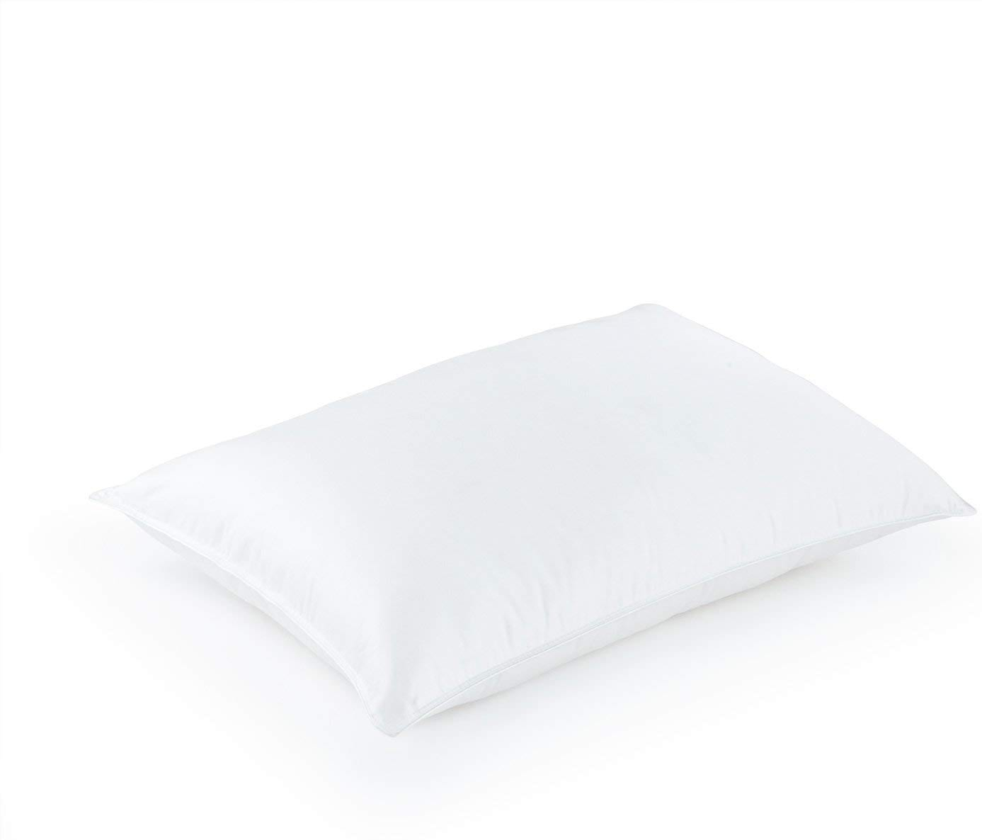 DOWNLITE best down pillows review by www.dailysleep.org