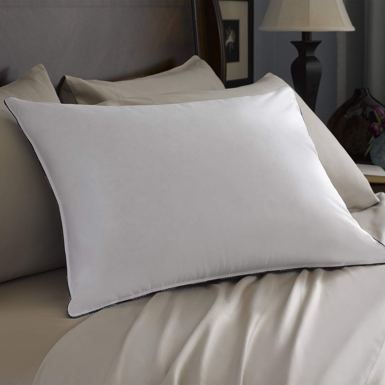 Pacific Coast best feather pillows review by www.dailysleep.org