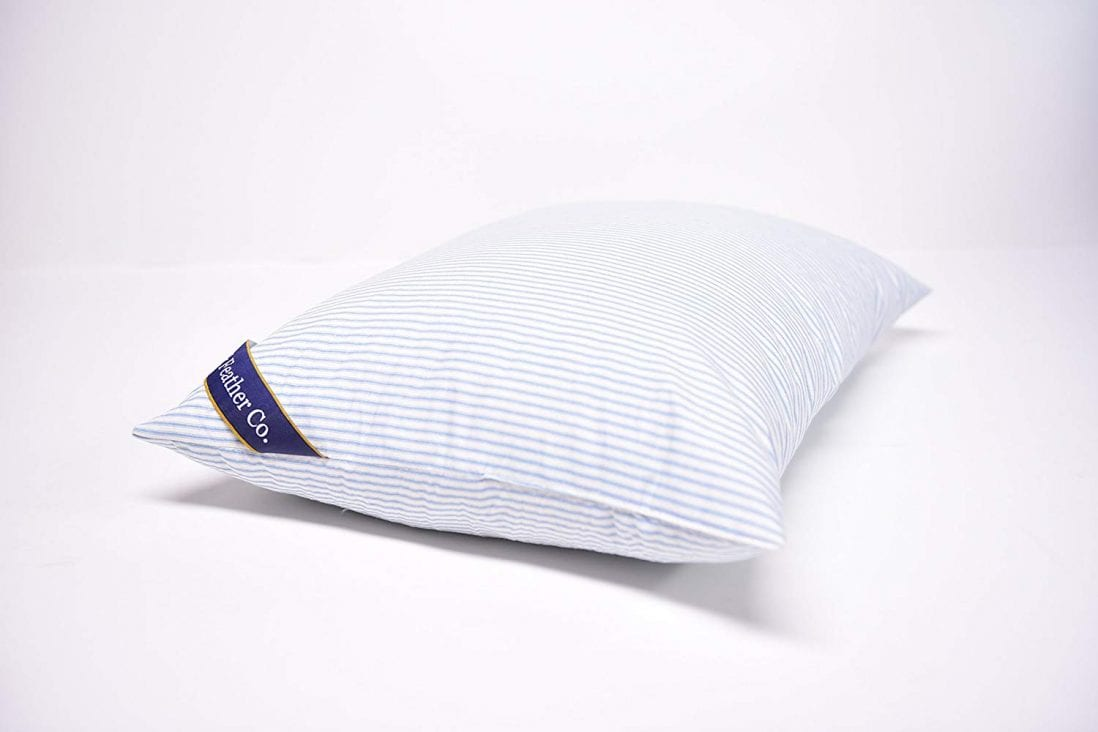 Down & Feather Co. most comfortable pillow review by www.dailysleep.org