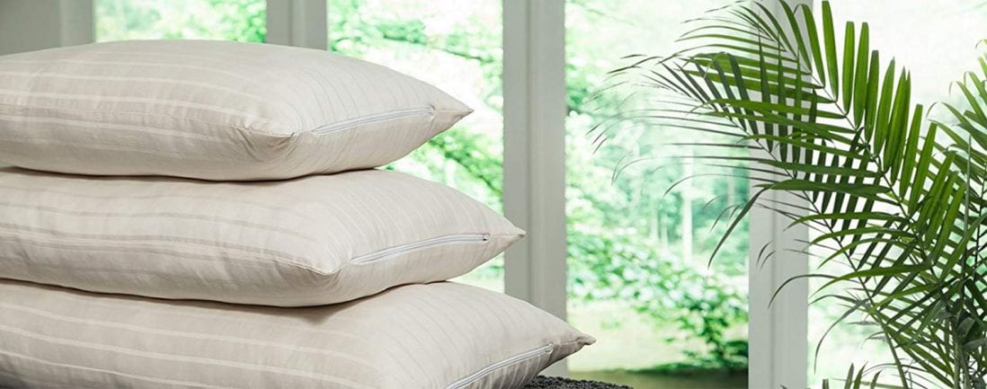 PlushBeds best organic pillows reviews and buying guide by www.dailysleep.org