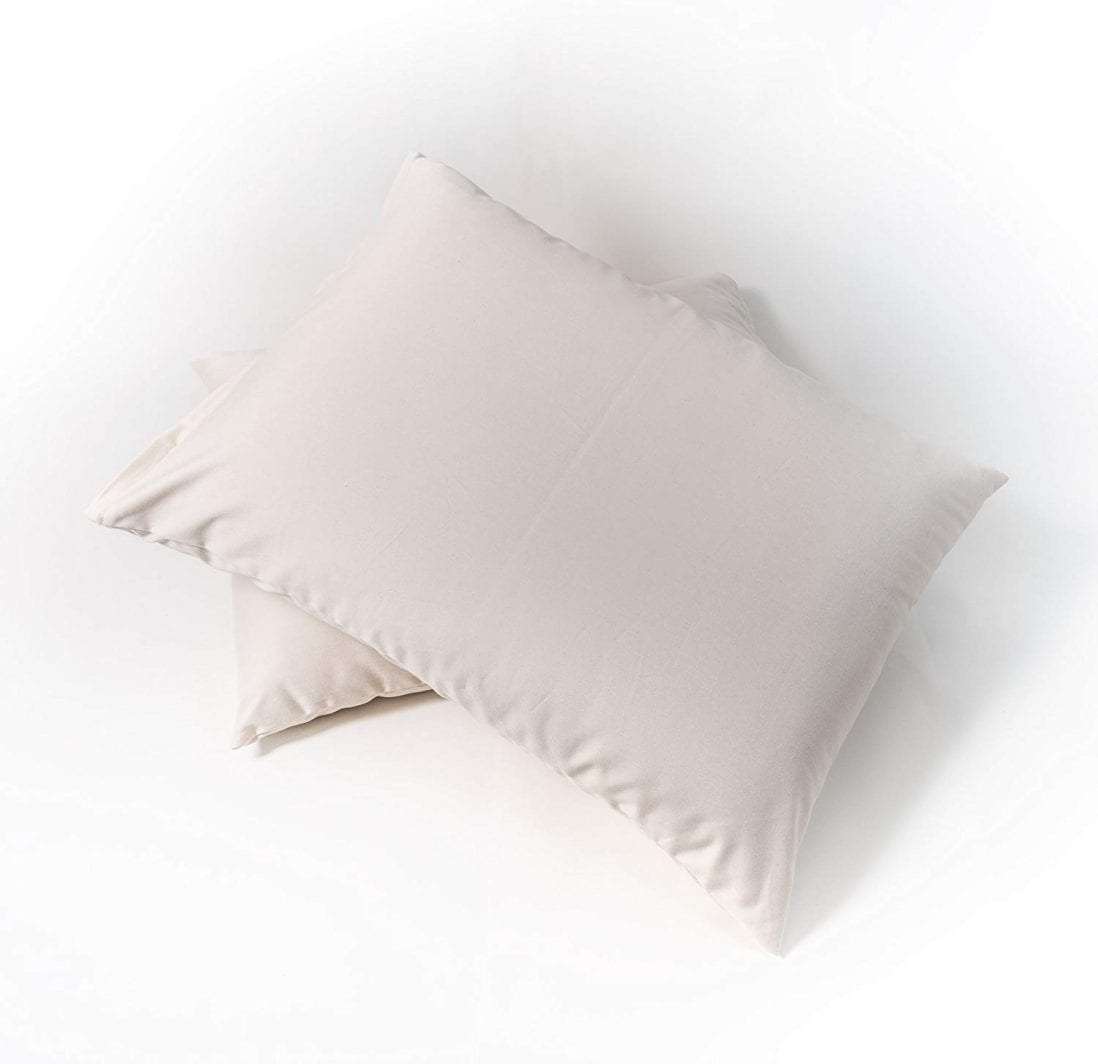 Sachi Organics best organic pillows reviews and buying guide by www.dailysleep.org