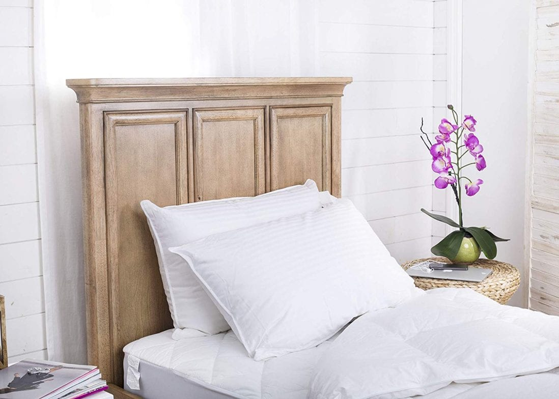 Continental Bedding SP100-Q.2 Set of 2-Superior 100% Down 700 Fill Power Hungarian White Goose Down Pillow Review and Buying Guide by www.dailysleep.com